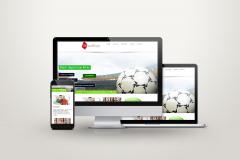 DK SportInvest